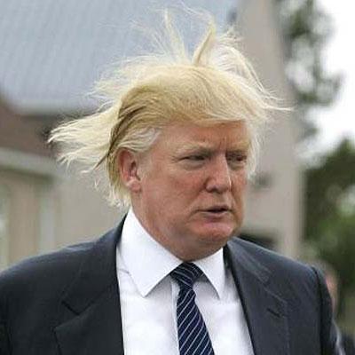 Donald Trump 411vibes