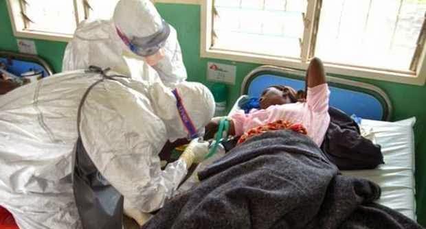 ebola virus 411vibes