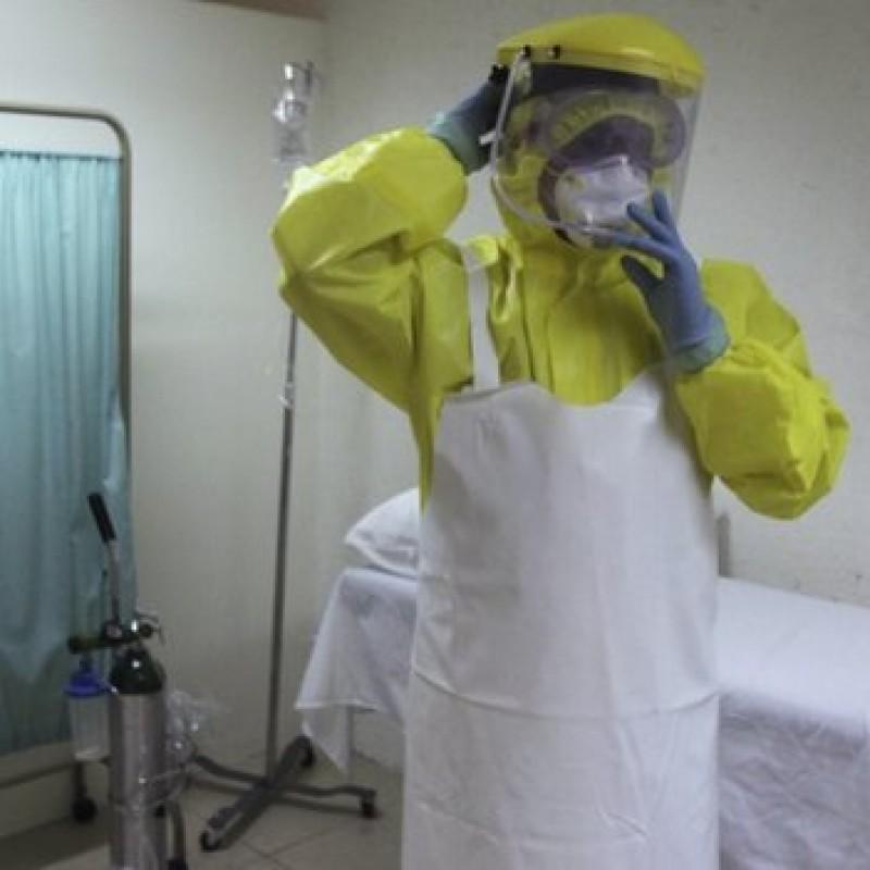 ebolas.
