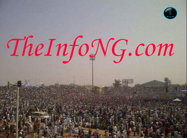 buhari kano campaign theinfong copy