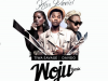 Woju Remix by Kiss Daniel ft Davido & Tiwa Savage - TheInfoNG.com - 650x606