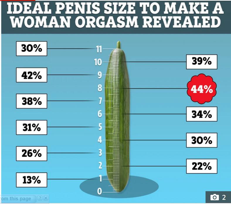 best-penis-size 01