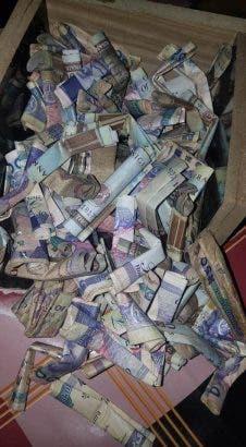 money-naira-piggybank