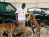 Alibaba shows off his dogs named after OBJ