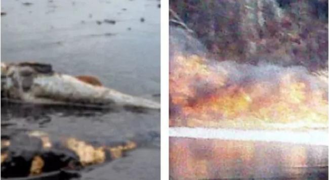 massive-oil-spills-into-niger-delta-communities