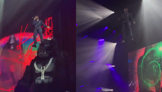 Burna Boy brings 'Gorilla' on stage during his African Giant tour at Wembley Arena, London (Video)
