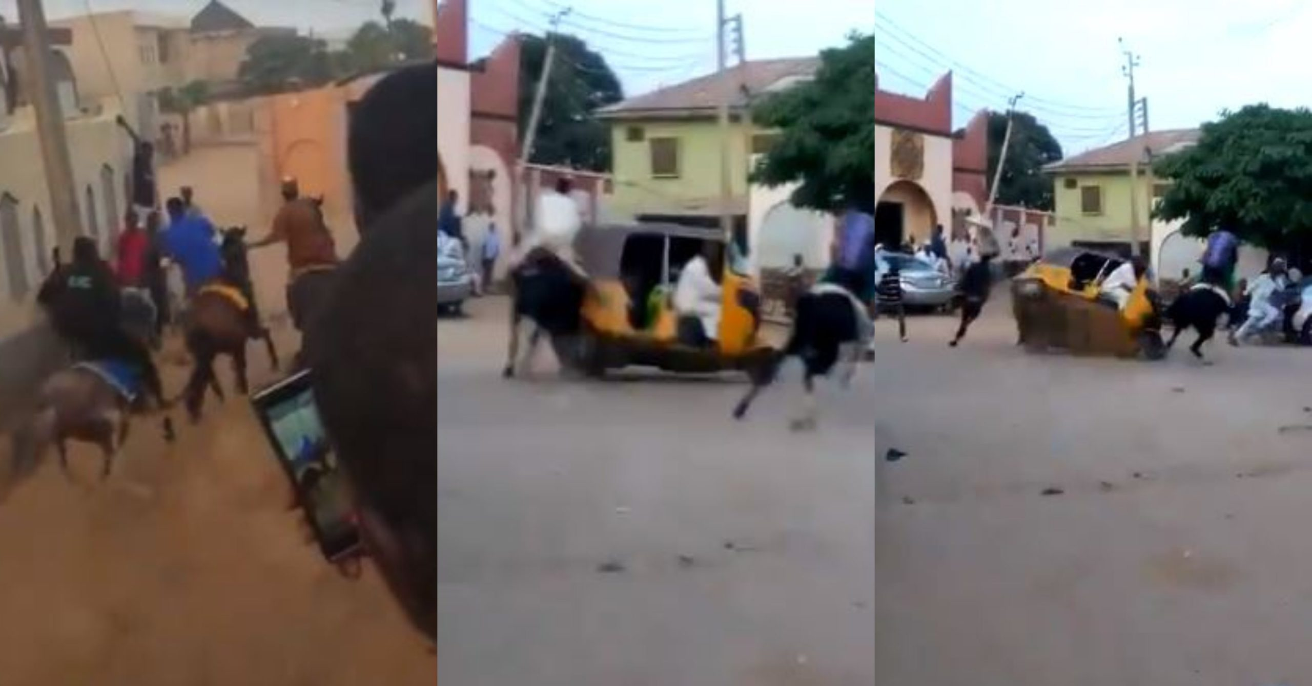 See viral videos of a horse race in the streets of Kano that has got social media users talking