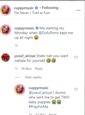 Dj-cuppy-cries-out