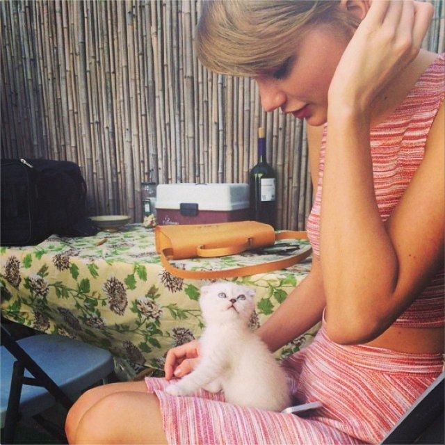 Taylor-Swift-introduces-kitten-Olivia-Benson