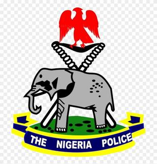 Image of the Nigerian Police